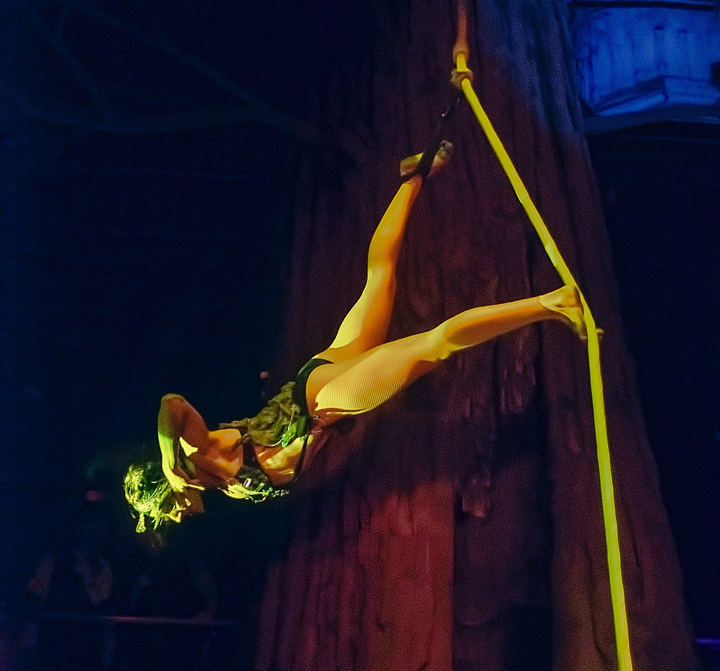 Lucent Dossier Tina Rope by Clarence at Cliftons