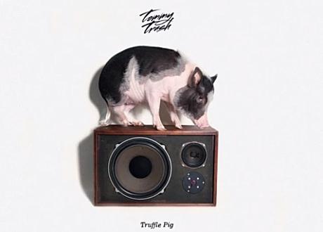 tommy trash truffle pig fools fold records
