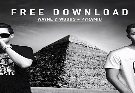 wayne and woods pyramid