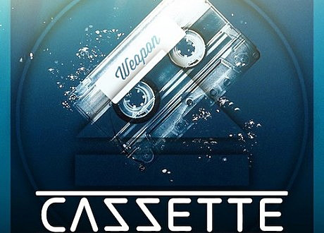 cazzette weapon vicetone remix
