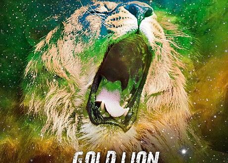 the yeah yeah yeahs gold lion vanic