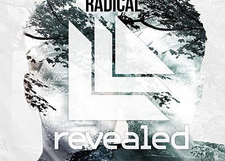 "Dyro & Dannic ""Radical"""
