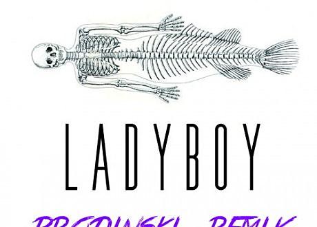 """brodinski """"ladyboy"""" remix"""